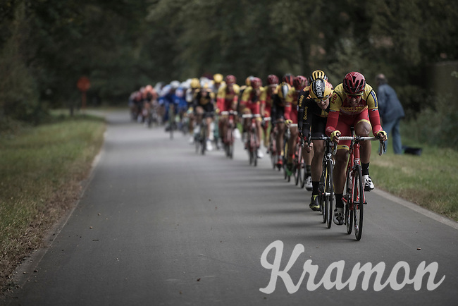 peloton lined up, gaining speed<br /> <br /> 83rd Nationale Sluitingsprijs Putte-Kapellen 2016 (UCI Europe Tour cat 1.1 / 189km)
