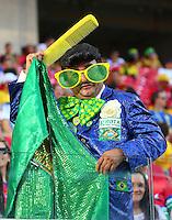 A Brazilian supporter in fancy dress as Elvis in the stands
