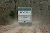 Horses, of course, Camden, SC.