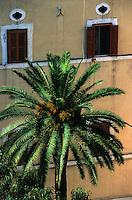 Europe/Italie/La Pouille/Bari: Détail immeuble et palmier