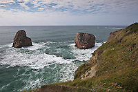 Europe/France/Aquitaine/64/Pyrénées-Atlantiques/Pays-Basque/Hendaye: Domaine d'Abbadia - le littoral: Les rochers dits: les jumeaux au bout de la plage d'Hendaye constituent le prolongement de la Corniche Basque - vu depuis le sentier littoral