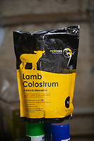 2-3-2021 Lamb Colostrum <br />  ©Tim Scrivener Photographer 07850 303986<br />      ....Covering Agriculture In The UK....