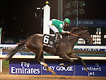 Nov.4, 2011.Royal Delta ridden by Jose Lezcano and trained by William I. Mott crossing the finish line and winning the  Breeders' Cup Ladies' Classic at Churchill Downs, Louisville, KY