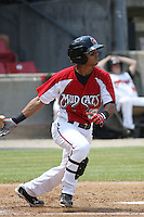 Jose Castro #2 of the Carolina Mudcats batting during a game against the West Tenn Diamond Jaxx on May 30, 2010 in Zebulon, NC.