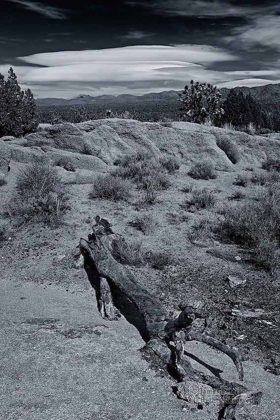 Lenticular Clouds over Ivanpah Mountains, Mojave Desert, California