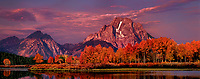 937000034 panoramic view - sunrise light brightens mount moran and the teton range reflected in the snake river with fall colored aspens at oxbow bend in grand tetons national park wyoming