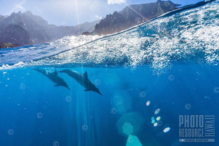 Over and under image of dolphins swimming off the Na Pali Coast on Kaua'i.