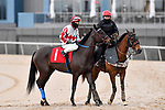 February 28, 2021:Chance to Shine #1 , ridden by Ken S. Tohill in the Bayakoa Stakes (Grade 3) for trainer Chris A. Hartman at Oaklawn Park in Hot Springs,  Arkansas. Ted McClenning/Eclipse Sportswire/CSM