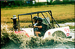 The Swamp Buggy races is an annual race in Naples, Florida. There is a Swamp Buggy Parade, a Swamp Buggy Queen and general mayhem in the Swamp.