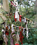 Madron Holy Well, Madron, Cornwall.  Votive offerings hang from the branches a small thorn tree that marks the entrance to the Well 1990s,