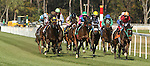 January 31, 2015: Momma's Happy (outside) takes the photo in the 5th Race scene at Tampa Bay Downs. Sue Kawczynski/ESW/CSM
