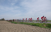 Team Katusha-Alpecin rolling at an easy pace while leading the peloton early in the race<br /> <br /> 108th Milano - Sanremo 2017