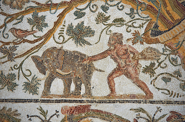 Detail of a Roman mosaics design depicting Silenus and Cupids showing a baby elephant, from the House of Sienus, ancient Roman city of Thysdrus. 3rd century AD. El Djem Archaeological Museum, El Djem, Tunisia.