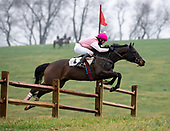 03/28/2021 - Cheshire Point to Point