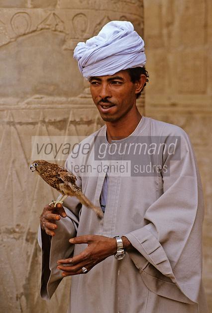 Afrique/Egypte/Edfou: Le temple d'Edfou consacré à Horus - Fauconnier devant le temple