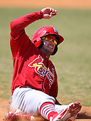 March 19, 2010:  Shane Robinson of the St. Louis Cardinals organization during Spring Training at the Roger Dean Stadium Complex in Jupiter, FL.  Photo By Mike Janes/Four Seam Images