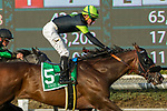 ARCADIA, CA  DECEMBER 26: #5 Bowies Hero, ridden by Kent Desormeaux, wins the Mathis Brothers Mile (Grade ll) on December 26, 2017 at Santa Anita Park in Arcadia, CA.(Photo by Casey Phillips/ Eclipse Sportswire/ Getty Images)