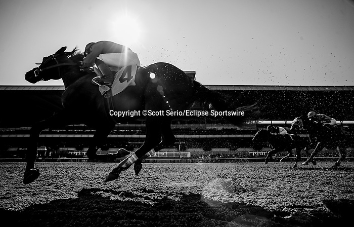 September 29, 2018 :  Riken wins a maiden race on the undercard on Jockey Club Gold Cup Day at Belmont Park on September 29, 2018 in Elmont, New York. Scott Serio/Eclipse Sportswire/CSM September 29, 2018 :  US Navy Cross, ridden by Jose Ortiz, wins a maiden race on the undercard on Jockey Club Gold Cup Day at Belmont Park on September 29, 2018 in Elmont, New York. Scott Serio/Eclipse Sportswire/CSM