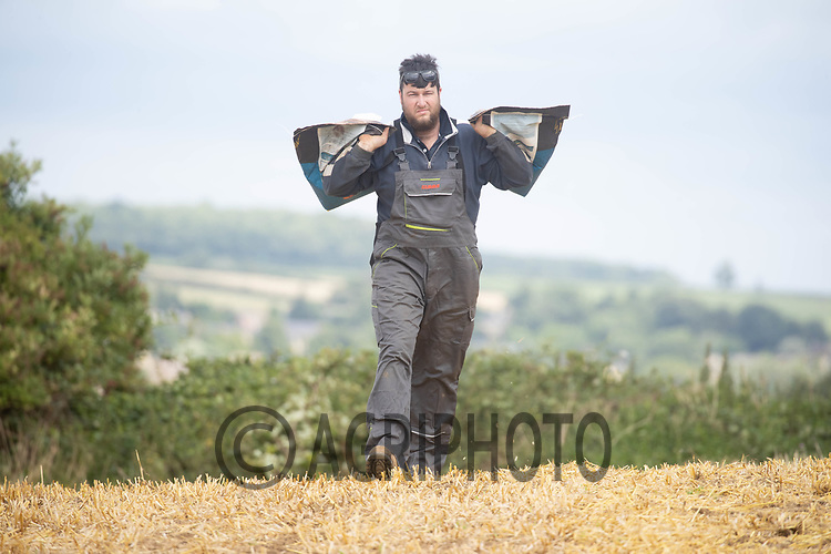 16-8-2021 Farm worker carrying bags of oil seed rape seed <br /> ©Tim Scrivener Photographer 07850 303986<br />      ....Covering Agriculture In The UK....