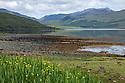 Looking down Loch Scridain, Isle of Mull, Scotland, UK. June.