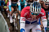 Mathieu Van der Poel (NED/Alpecin-Fenix) up the first passage of the Oude Kwaremont<br /> <br /> 104th Ronde van Vlaanderen 2020 (1.UWT)<br /> 1 day race from Antwerpen to Oudenaarde (BEL/243km) <br /> <br /> ©kramon
