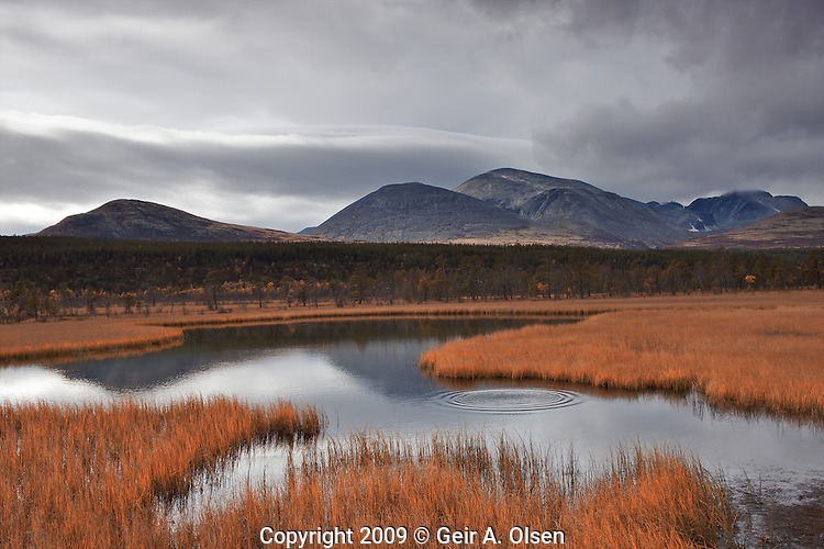 Autumn in Rondane, National park in the middle of Norway