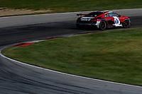 #8 McCann Racing Audi R8 GT4, GS: Britt Casey Jr., Michael McCann