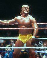 Hulk Hogan, 1989 Photo By John Barrett/PHOTOlink