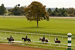 October 23, 2021: Scenes at Keeneland Racecourse in Lexington, KY on October 23, 2021.  Candice Chavez/ESW/CSM
