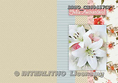Alfredo, FLOWERS, paintings, BRTOCH40457CP,#F# Blumen, flores, illustrations, pinturas