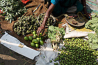 A woman organises her stall in a small market in Kolkata.<br /> <br /> To license this image, please contact the National Geographic Creative Collection:<br /> <br /> Image ID: 1925850 <br />  <br /> Email: natgeocreative@ngs.org<br /> <br /> Telephone: 202 857 7537 / Toll Free 800 434 2244<br /> <br /> National Geographic Creative<br /> 1145 17th St NW, Washington DC 20036