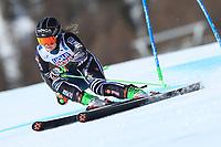 18th February 2021; Cortina d'Ampezzo, Italy; FIS Alpine World Ski Championships  Cortina Women's Giant Slalom; Alice Robinson (NZL)