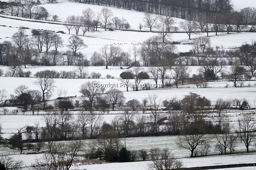 17/01/18<br /> <br /> A snowy woodland creates a beautiful winter scene after overnight snowfall in the Derbyshire Peak District near Castleton..<br /> <br /> All Rights Reserved F Stop Press Ltd. +44 (0)1335 344240 +44 (0)7765 242650  www.fstoppress.com