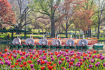 San boats at the Public Garden, Boston, Massachusetts, USA