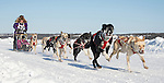 At the Canadian Championship Dog Derby in Yellowknife, 2013