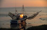 Europe/France/Aquitaine/33/Gironde/Pauillac: Bateau de pêche sur les bords de la Gironde à l'aube
