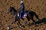 November 3, 2020: Nay Lady Nay, trained by trainer Chad C. Brown, exercises in preparation for the Breeders' Cup Filly & Mare Turf at Keeneland Racetrack in Lexington, Kentucky on November 3, 2020. John Voorhees/Eclipse Sportswire/Breeders Cup/CSM