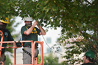 Bentonville Parks and Recreation staff Mike Van Horn, (from left) Jimmy Hutchison and Damian Brooks hang string lights, Friday, September 11, 2020 along the side of a tree at the downtown square in Bentonville. Bentonville Parks and Recreation have started hanging the roughly 37 miles of Christmas lights along the greenery at the square. That's approximately 390,000 lights. The plan is to complete the installation the week before Thanksgiving and the yearly Lighting of the Square. Check out nwaonline.com/200912Daily/ for today's photo gallery. <br /> (NWA Democrat-Gazette/Charlie Kaijo)