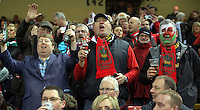 Wales supporters during the RBS 6 Nations Championship rugby game between Wales and Scotland at the Principality Stadium, Cardiff, Wales, UK Saturday 13 February 2016