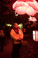 The China Lights give a wonderful glow to visitors