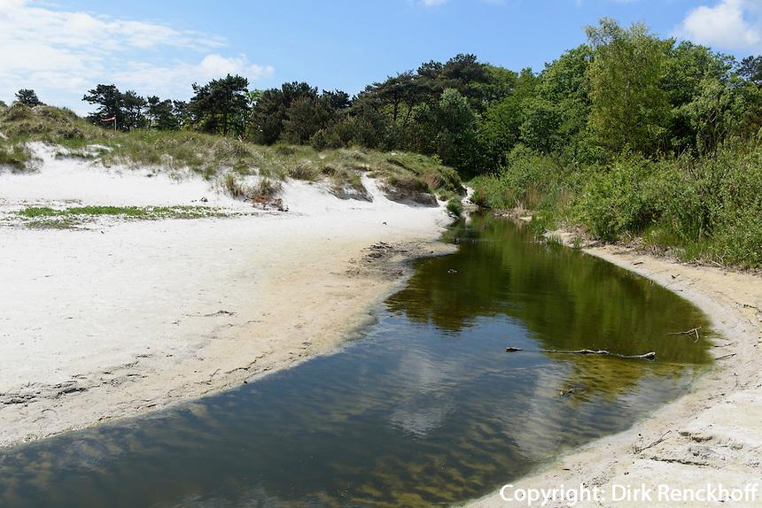 Strand von Balka auf der Insel Bornholm, Dänemark, Europa<br /> beach at Balka, Isle of Bornholm Denmark