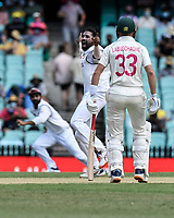 7th January 2021; Sydney Cricket Ground, Sydney, New South Wales, Australia; International Test Cricket, Third Test Day One, Australia versus India; Mohammed Siraj of India appeals for a wicket