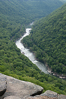 New River Gorge National Park, West Virginia.  View of New River from Endless Wall Trail.