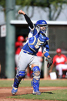 Los Angeles Dodgers catcher Julian Leon (43) during an Instructional League game against the Cincinnati Reds on October 11, 2014 at Goodyear Training Complex in Goodyear, Arizona.  (Mike Janes/Four Seam Images)