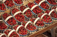 Europe/France/Rhône-Alpes/69/Rhône/Villefranche-sur-Saône: Le marché - Etal de fraises
