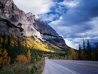Mountainside with fall colored aspen trees and road. Banff National Park, Alberta, Canada