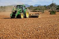 SPAIN Mallorca, Es Llombards, almond trees, John Deere tractor / SPANIEN Mallorca, Es Llombards, alte Mandelbaeume, John Deere Traktor