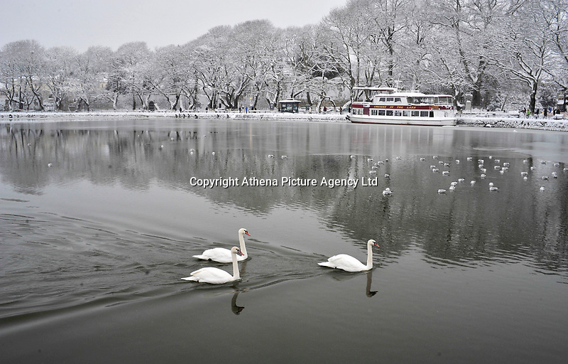 Pictured: Swans in the partially frozen over lake in Ioannina, Greece. Wednesday 11 January 2017<br /> Re: Heavy snow has affected the town of Ioannina, northern Greece