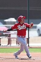 Hernan Iribarren #26 of the Cincinnati Reds bats during a Minor League Spring Training Game against the Cleveland Indians at the Cincinnati Reds Spring Training Complex on March 25, 2014 in Goodyear, Arizona. (Larry Goren/Four Seam Images)