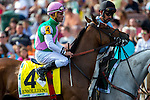 AUG 16, 2014: Emollient, ridden by Joel Rosario, before the 25th runningin the 25th running of The Beverly D. Stakes at Arlington International Race Track in Arlington Heights, IL. Jon Durr/ESW/Cal Sport Media